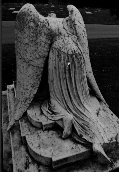 Il fascino del silenzio angelo del dolore copia colma for Dolore addome sinistro alto